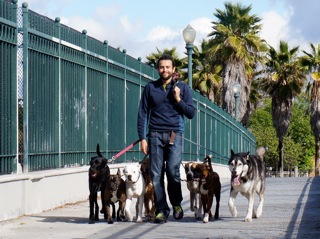 Walk as a pack